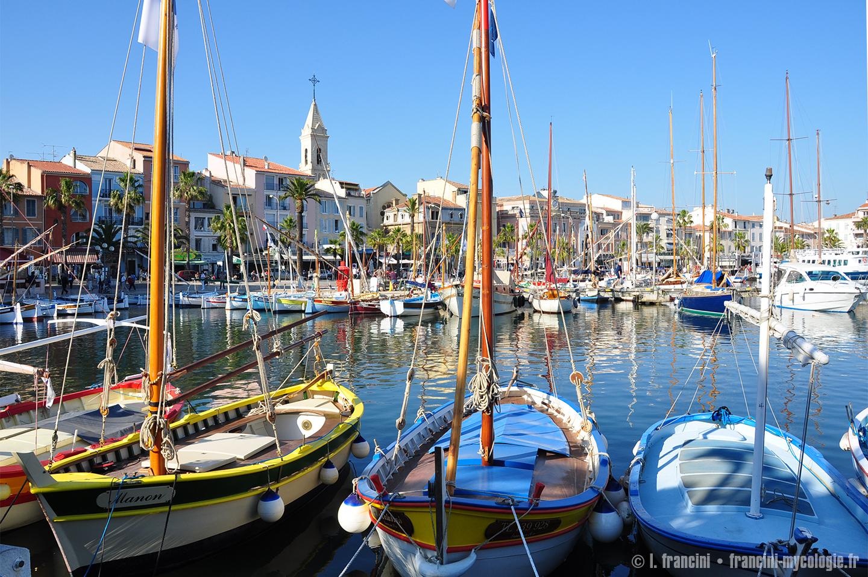 Sanary sur mer le port - Office du tourisme de sanary sur mer ...